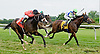 Dramedy winning at Delaware Park on 8/30/14