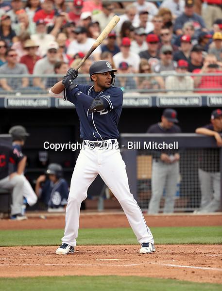 Fernando Tatis Jr - San Diego Padres 2018 spring training (Bill Mitchell)