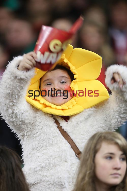 A young Welsh fan enjoying the pre-match build up.<br /> Dove Men Series 2014<br /> Wales v Fiji<br /> Millennium Stadium<br /> 15.11.14<br /> ©Steve Pope-SPORTINGWALES
