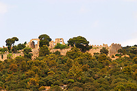 Domaine d'Aupilhac. Montpeyroux. Languedoc. The ruins of a chateau fortress. Chateau de Castellas ruin. France. Europe.