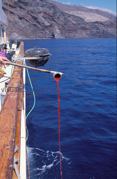 Chumming for Great White Sharks, Guadalupe Island, Mexico.