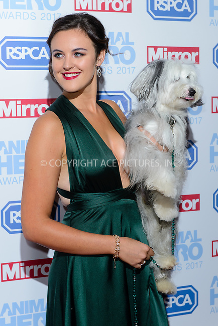 www.acepixs.com<br /> <br /> September 7 2017, London<br /> <br /> Ashleigh Butler attending the Animal Hero Awards 2017 on at the Grosvenor Hotel on September 7 2017 in London<br /> <br /> By Line: Famous/ACE Pictures<br /> <br /> <br /> ACE Pictures Inc<br /> Tel: 6467670430<br /> Email: info@acepixs.com<br /> www.acepixs.com
