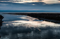 In twilight's glow, San Lorenzo Creek flows into San Francisco Bay, with ripples and floating American Coots, cloud reflections and mountains on the horizon.