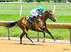 Layla winning at Delaware Park on 7/10/17