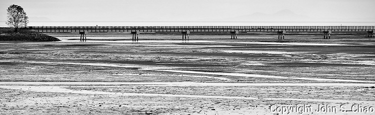 Panoramic format in B&W of patterns in mud flats at low tide, bridge with silhouettes of eagle and heron perched at either end and distant mountains in backdrop. Washington Harbor, Sequim, Washington.