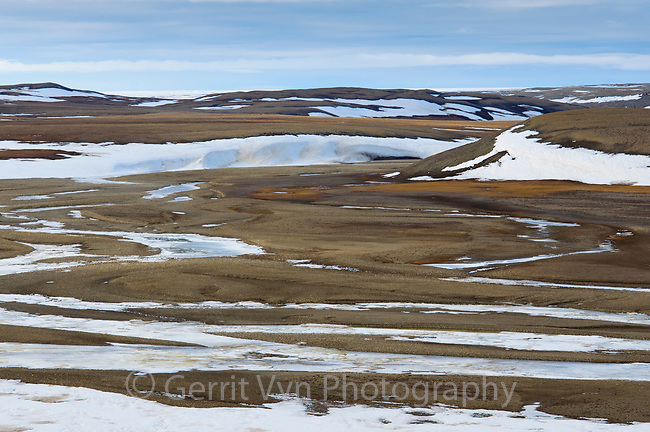 Thawing river drainage. Polar Bear Pass, Bathurst Island, Nunavut, Canada. June.