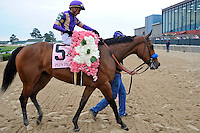 Plum Pretty (no. 5), ridden by Rafael Bejarano and trained by Bob Baffert, wins the 48th running of the grade 1 Apple Blossom Handicap for fillies and mares four years old and upward on April 13, 2012 at Oaklawn Park in Hot Springs, Arkansas.  (Bob Mayberger/Eclipse Sportswire)