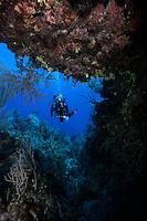 Scuba Diver, Bahama Islands