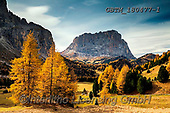 Tom Mackie, LANDSCAPES, LANDSCHAFTEN, PAISAJES, photos,+Dolomites, Dolomiti, Europa, Europe, European, Italian, Italy, Sasso Lungo, South Tyrol, Tom Mackie, Trentino, UNESCO World H+eritage Site, atmosphere, atmospheric, autumn, autumnal, dramatic outdoors, fall, horizontally, horizontals, inspirational, l+andscape, landscapes, larch, larches, mood, moody, mountain, mountainous, mountains, peaceful, peak, scenery, scenic, season,+tourist attraction, tranquil, tranquility, tree, trees, yellow,Dolomites, Dolomiti, Europa, Europe, European, Italian, Italy+,GBTM180477-1,#l#, EVERYDAY
