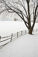 Snow covered farmland in Albemarle County, VA.