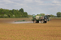 15.5.2020  Spraying sugar beet in Lincolnshire <br /> ©Tim Scrivener Photographer 07850 303986<br />      ....Covering Agriculture In The UK....