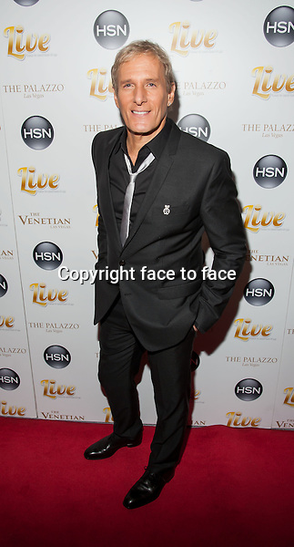 Michale Bolton - LAS VEGAS, NV - February 8 : HSN Concert Featuring Michael Bolton at The Venetian in Las Vegas, Nevada on February 8, 2013...Credit: MediaPunch/face to face..- Germany, Austria, Switzerland, Eastern Europe, Australia, UK, USA, Taiwan, Singapore, China, Malaysia and Thailand rights only -