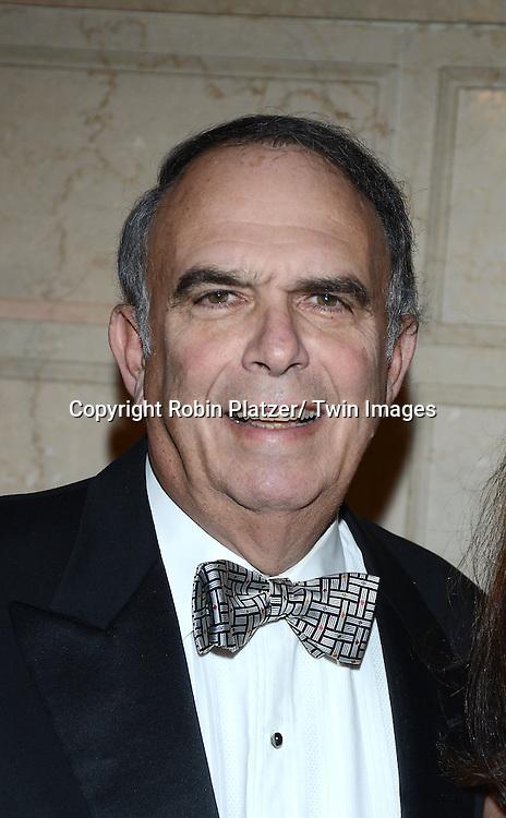 Martin Camins attends the New York Landmarks Consevancy's 20th Annual Living Landmarks Celebration on November 14, 2013 at the Plaza Hotel in New York City.