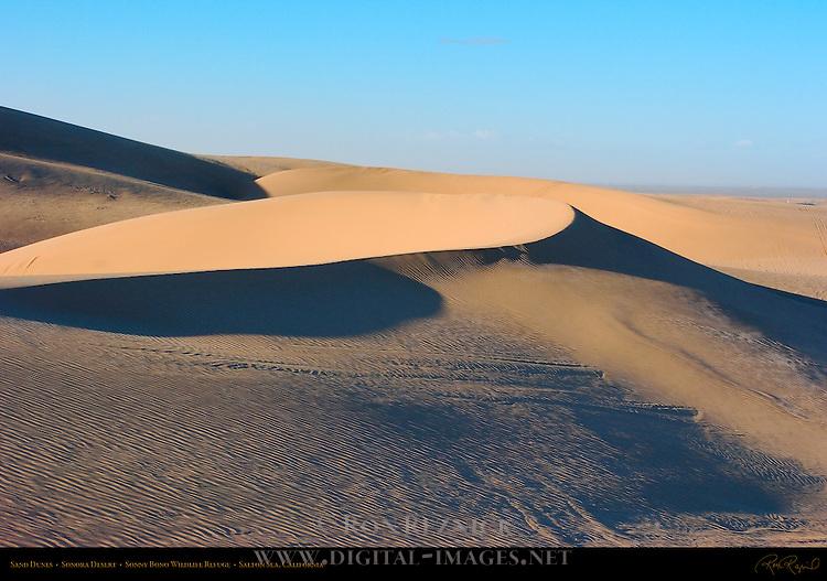 Sand Dunes, Sonora Desert, Sonny Bono Wildlife Refuge, Salton Sea, Southern California