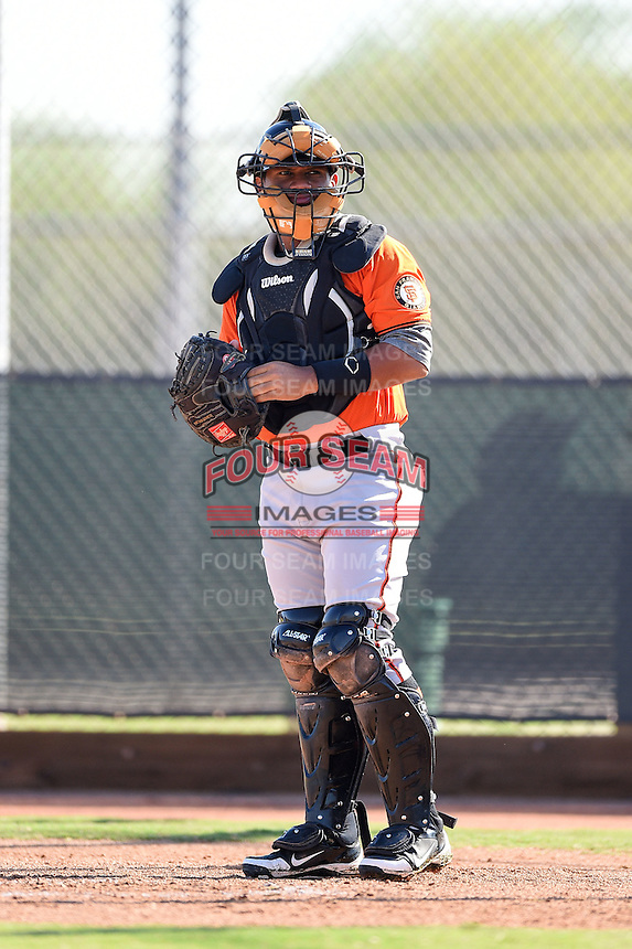 San Francisco Giants catcher Miguel Gomez (1) during an Instructional League game against the Milwaukee Brewers on October 10, 2014 at Maryvale Baseball Park Training Complex in Phoenix, Arizona.  (Mike Janes/Four Seam Images)