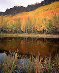 """Long Lake, Matanuska Valley, Chugach Mountains"