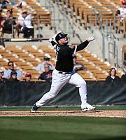 Jake Burger - Chicago White Sox 2018 spring training (Bill Mitchell)