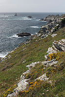 France, Bretagne, (29), Finistère, Cap Sizun, Plogoff: Pointe du Raz //  France, Brittany, Car Sizun, Plogoff: The Pointe du Raz
