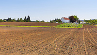 Community Supported Agriculture Farm, 47th Avenue Farm, plowed and ready for sprint planting.  Luscher Farms Park, City of Lake Oswego, Oregon, USA.