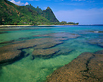 Kauai, HI<br /> Reef and green waters of Maniniholo Bay at low tide with Makana peak in the distance, Kauai's north shore