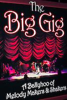 The Big Gig - 2013