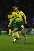 Emiliano Buendia of Norwich City during Brighton & Hove Albion vs Norwich City, Premier League Football at the American Express Community Stadium on 2nd November 2019