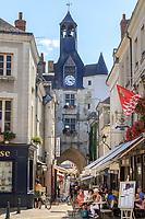 France, Indre et Loire, Amboise, Tour de l'Horloge or Clock Tower// France, Indre-et-Loire (37), Amboise, Tour de l'Horloge