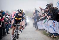 Belgian National Champion Yves LAMPAERT (BEL/Deceuninck-Quick Step) over the infamous Carrefour de l' Arbre cobbles<br /> <br /> 117th Paris-Roubaix 2019 (1.UWT)<br /> One day race from Compiègne to Roubaix (FRA/257km)<br /> <br /> ©kramon