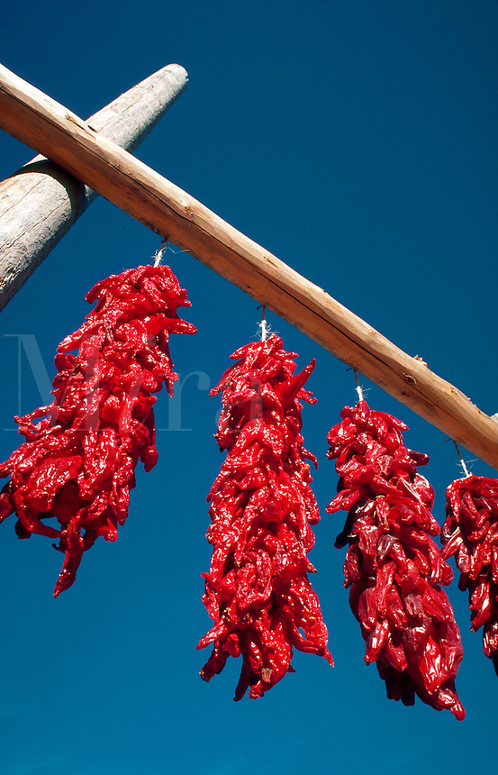 Graphic image of red chili peppers against a blue sky.