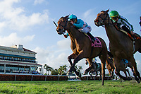 HALLANDALE BEACH, FL-FEBRUARY 10: Elysea's World #8, ridden by Javier Castellano, wins the Swannee River Stakes at Gulfstream Park Race Track on February 10, 2018 in Hallandale Beach, Florida. (Photo by Kaz Ishida/Eclipse Sportswire/Getty Images)