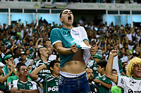 PALMIRA - COLOMBIA, 20-11-2019: Hinchas del Cali animan a su equipo durante partido entre Deportivo Cali y América de Cali por la fecha 4, cuadrangulares semifinales, de la Liga Águila II 2019 jugado en el estadio Deportivo Cali de la ciudad de Palmira. / Fans of Cali cheer for their team during match between Deportivo Cali and America de Cali for the date 4, quadrangulars semifinals, as part of Aguila League II 2019 at Deportivo Cali stadium in Palmira city. Photo: VizzorImage / Nelson Rios / Cont