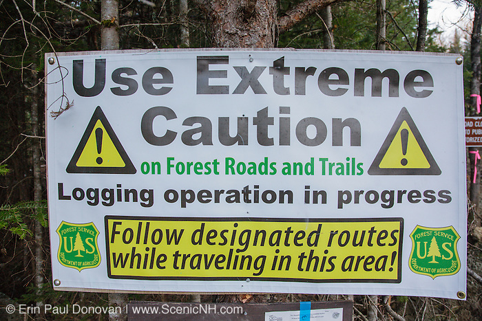 Timber Harvest sign in the White Mountain National Forest during the spring months