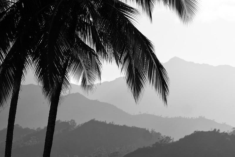 Mountains near Hanalei with palm trees. Kauai, Hawaii