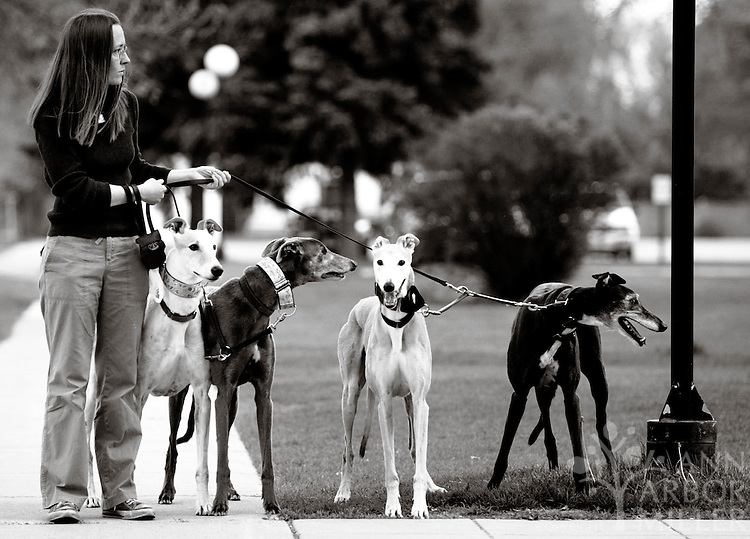 "The activities of a nearby squirrel prompt Sarah Snavely and her dogs, Apollo, Kelly, Sterling and Striker (from left to right) to take a break during their evening walk on May 16, 2003 in Moorhead, Minn. ""The more they walk, the better night's sleep I get,"" says Snavely."