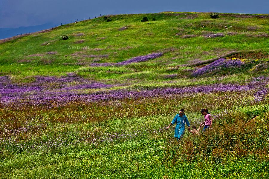 Azerbaijan, Lerik District, June 1, 2011<br /> Members of a village family walk through fields of wild flowers to get to their farm. Lerik is a district in the southern part of Azerbaijan, near the Iranian border. This mountain area has earned a reputation for being the &ldquo;home of people who live to a great age.&rdquo; <br /> <br /> Azerba&iuml;djan, district de Lerik, 1er juin 2011 <br /> Les membres d&rsquo;une famille du village marchant &agrave; travers les champs de fleurs sauvages pour se rendre dans leur ferme. Situ&eacute; pr&egrave;s de la fronti&egrave;re iranienne, dans le sud de l&rsquo;Azerba&iuml;djan, le district montagneux de Lerik est connu comme &eacute;tant &laquo; la terre de ceux qui vivent &acirc;g&eacute;s &raquo;.