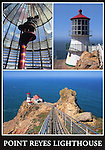 FB 288  Point Reyes Lighthouse  5x7 Postcard.  Frank Balthis