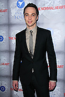 """Jim Parsons<br /> at the HBO Premiere of """"The Normal Heart,"""" WGA Theater, Beverly Hills, CA 05-19-14<br /> David Edwards/DailyCeleb.com 818-249-4998"""
