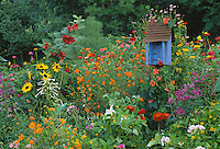 Colorful garden with bright blue birdhouse