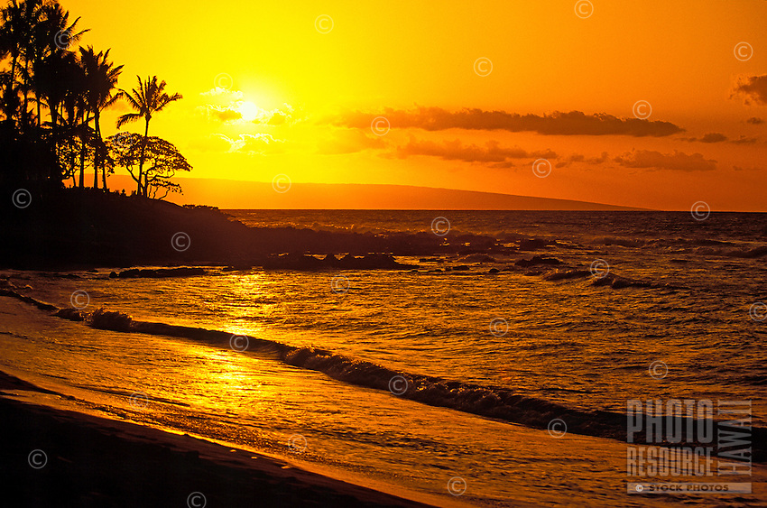 Palm trees are silhouetted against a glorious golden sunset at Napili Bay near Kapalua, west Maui.