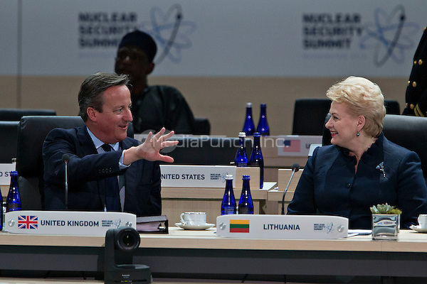 David Cameron, U.K. prime minister, left, talks to Dalia Grybauskaite, Lithuania's president, during a closing session at the Nuclear Security Summit in Washington, D.C., U.S., on Friday, April 1, 2016. After a spate of terrorist attacks from Europe to Africa, U.S. President Barack Obama is rallying international support during the summit for an effort to keep Islamic State and similar groups from obtaining nuclear material and other weapons of mass destruction. <br /> Credit: Andrew Harrer / Pool via CNP/MediaPunch