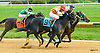 What About Tonight winning at Delaware Park on 10/13/16