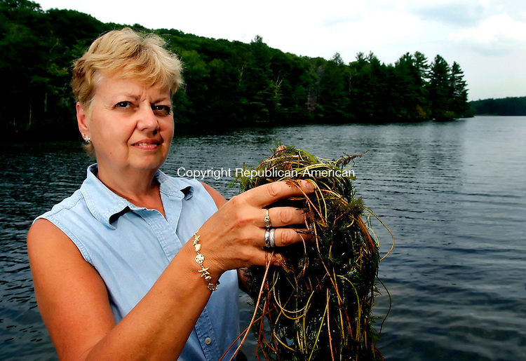 WINSTED, CT - 12 AUGUST 2005 -081205JS03-- Ann Gorman of Winsted holds some Eurasian watermilfoil she pulled from the waters of Park Pond in Winchester Center. Gorman has led a campaign which has let to a DEP study testing the weed presence and water quality in Park Pond. The DEP will hold a meeting in Winsted to discuss the results of their study.   --Jim Shannon Photo--Garrick Dinneen, Cornwall are CQ