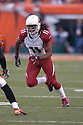 LARRY FITZGERALD, of the Arizona Cardinals, in action during their game against the Cincinnati Bengals on November 18, 2007 in Cincinnati, Ohio...Cardinals win 35-27..SportPics