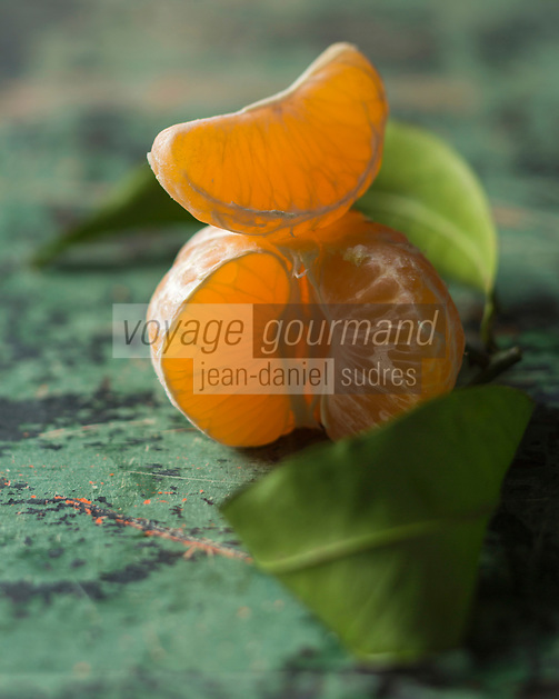 Europe,France, Europe, France, Corse (2B) Haute-Corse: Clémentine de Corse  bio//  Europe, France, Haute Corse, Organic Corsican clementines
