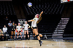 Hailey Brooke McFadden (8) of the Wake Forest Demon Deacons serves against the Loyola Ramblers in the LJVM Coliseum on September 3, 2016 in Winston-Salem, North Carolina.  The Ramblers defeated the Demon Deacons 3-2.   (Brian Westerholt/Sports On Film)