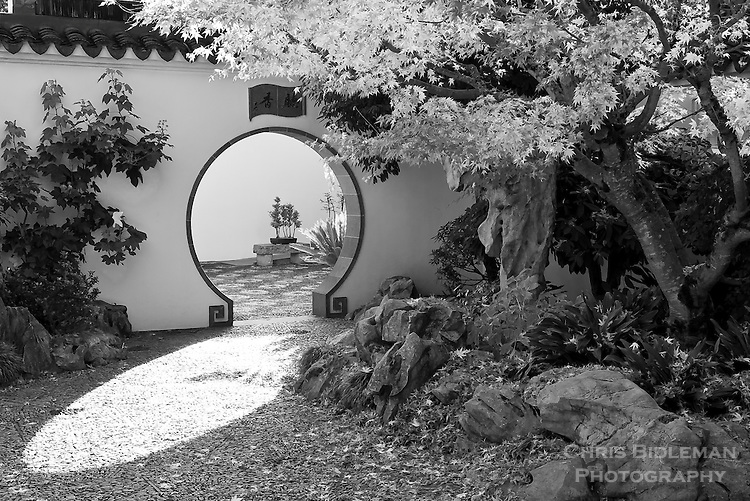 Sunlight is seen through the keyhole doorway into the scholar\u0027s courtyard with rocks and Japanese Maple & Black \u0026 White photo of Chinese Garden with sunlight through doorway ...