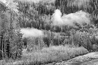 Stillaguamish River, Mount Baker-Snoquakmie Natuional Forest, Washington