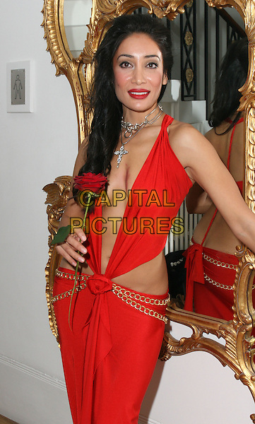 SOFIA HYATT.Bloodlust Ball hosted by the Button Club at One Marylebone Road, London, England.  .October 25th 2008.half length 3/4 sophia hyat red dress plunging neckline cleavage red rose necklace silver .CAP/JIL.©Jill Mayhew/Capital Pictures