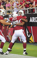 Aug. 28, 2009; Glendale, AZ, USA; Arizona Cardinals running back (26) Beanie Wells is congratulated by wide receiver Larry Fitzgerald after scoring a touchdown against the Green Bay Packers during a preseason game at University of Phoenix Stadium. Mandatory Credit: Mark J. Rebilas-