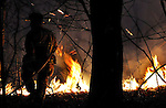 A Manchester Fire, Rescue and EMS firefighter waits for water as an intense brush fire burns around him, Thursday evening, Feb. 23, 2012, behind St James Cemetery on Broad Street in Manchester. the fire broke out just after 6pm and consumed about 3 acres of dry brush and leaves. broadcast reports said that witnesses spotted two people running away from the area just after the smoke appeared. Brush fires like are typically a spring time occurrence but this winter warm and dry condition have lead to several brush fires including one earlier in the day also in  Manchester. (Jim Michaud/Journal Inquirer)